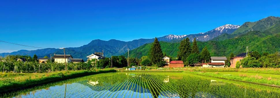 都道府県から探す